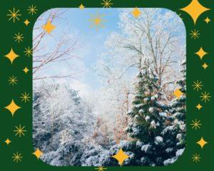 Kerst Stilte wandeling